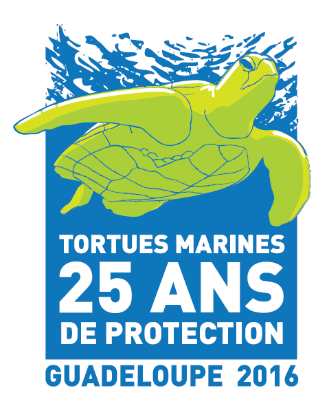 Logo 25 ans de protection tortues marines